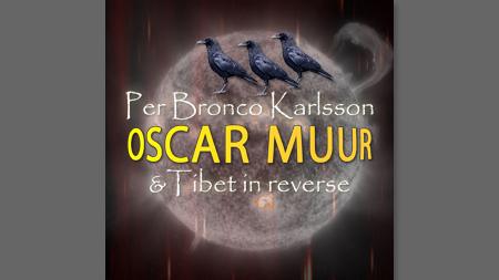 Per Bronco Karlsson